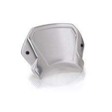 Aluminium Frontal plate - BMW - R NINE T SCRAMBLER